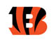 Cincinnati Bengals use Black Iron Strength®