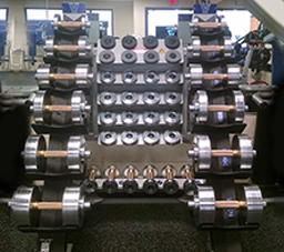 Villanova Wildcats use Black Iron Strength® Adjustable Dumbbells.