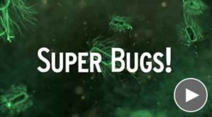 Super Bugs with Play Button