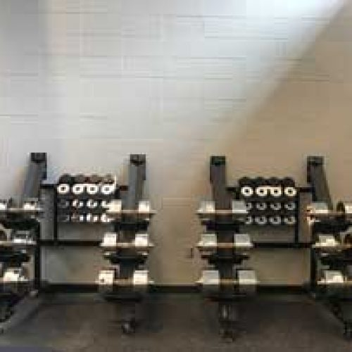 Michigan Football uses Black Iron Strength® use Antimicrobial Copper Adjustable Dumbbells.